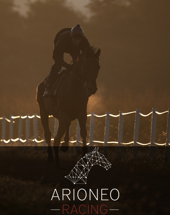 Arioneo racing equimetre cheval course