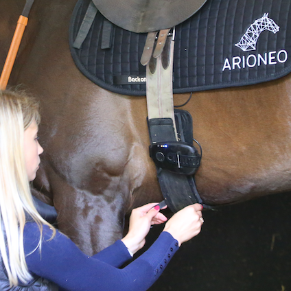 race horse monitoring fixing system