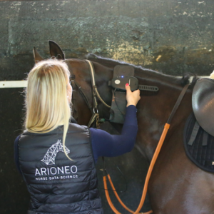 horse training rfid microchip reading