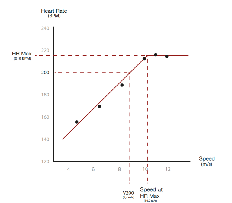 Evolution of heart rate speed horse race