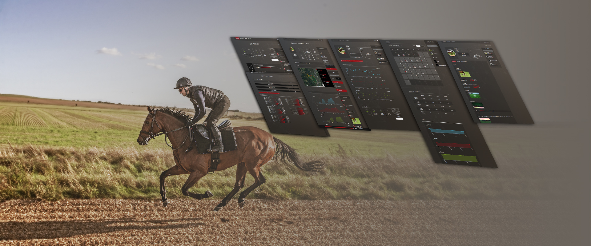 Racehorse training heart rate speed